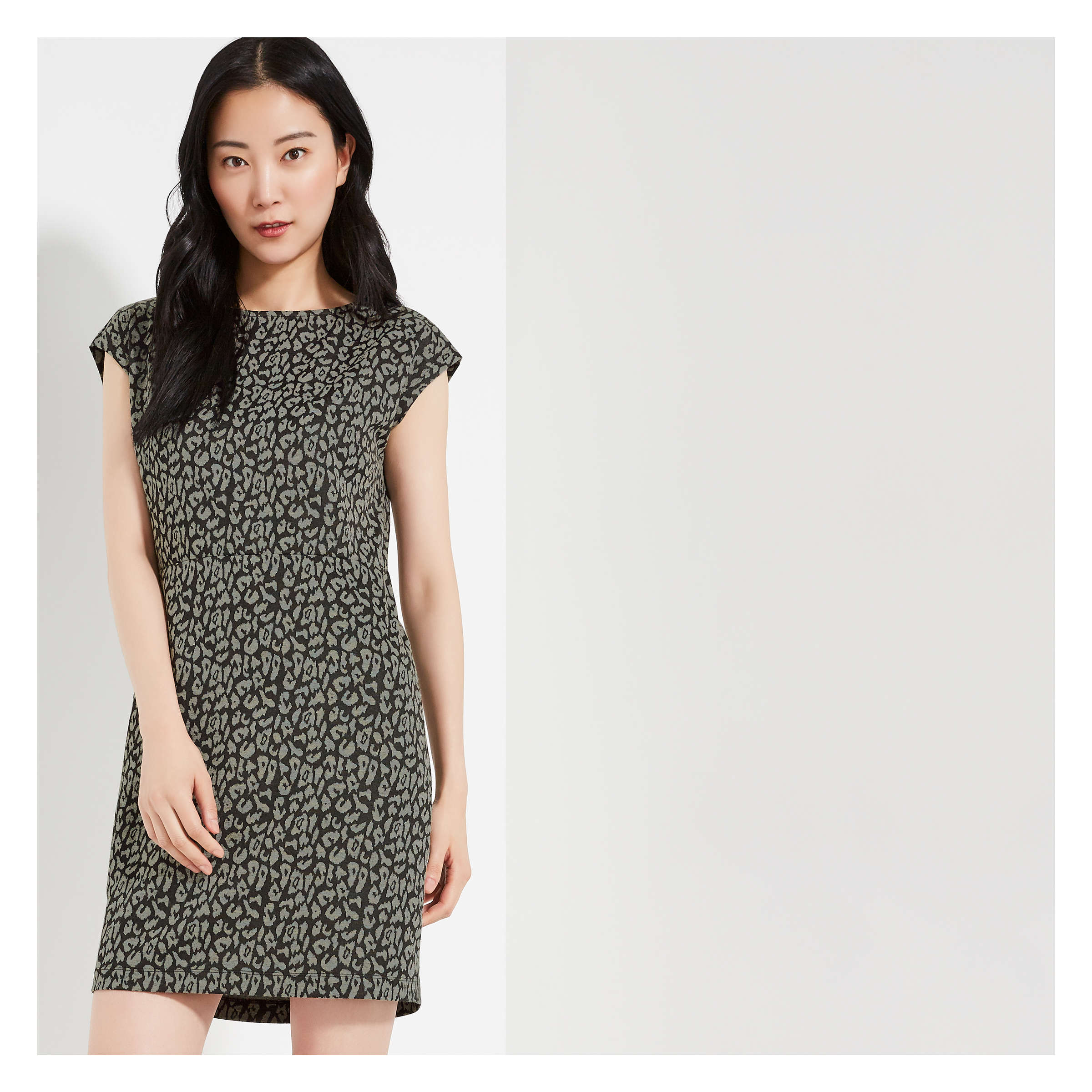 Print Jacquard Knit Dress by Joe Fresh